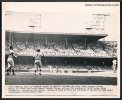 Mickey Mantle Original Vintage Baseball Press Photo